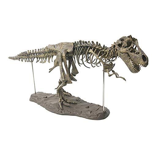 JOAN DOMINGUEZ 4D Tyrannosaurus Rex Mining Science Kit Dig Dinosaurier und Montieren 4D Skelett Antike Tiere Fossilien