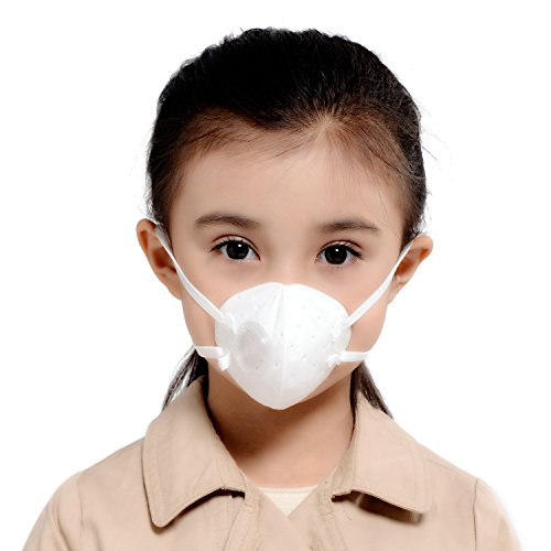 Dust Mask, KANJEKANLE Face & Atmung Maske, Atemwege Masken für Holz Arbeit, schneiden Gras, Feuer Jahreszeit, Probleme mit der Atmung, Asthma, Allergien und alle Tther Bad Bereich Kinder Alter (Masken Halloween Benutzerdefinierte)