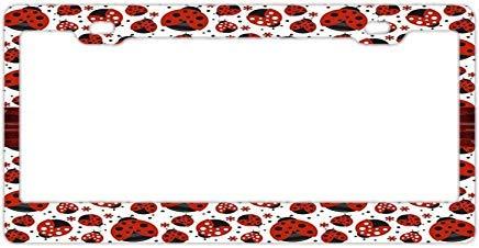 Preisvergleich Produktbild qidushop Apple Keyboard Funny Nummernschild Cover für Auto Dekoration Rahmen Auto Tag