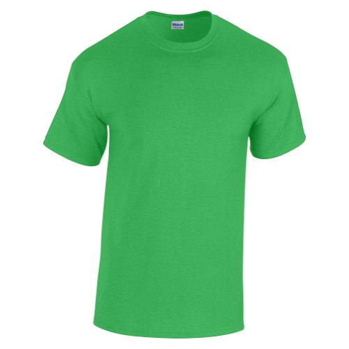 Delifhted Men's Heavy Cotton T-Shirt Giada vintage