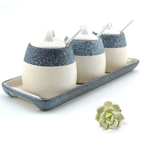 Gewürzdose Gewürzdosen Gewürzflasche Europäische Schnee Keramik Set von 3 -250g , 1
