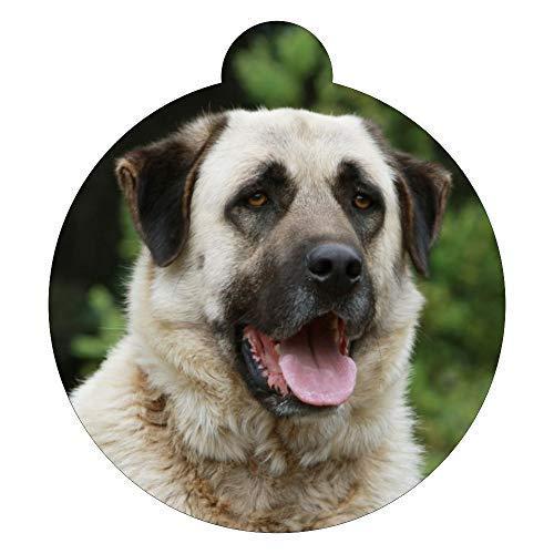 Lokipets Anatolian Shepherd Dog Breed Picture Pet ID tag photo tag