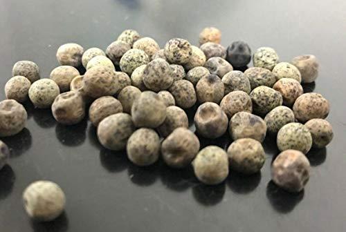 FERRY Bio-Saatgut Nicht nur Pflanzen: 1-2000 Samen: Speck Erbsensamen (Pisum sativum) - Bio-by