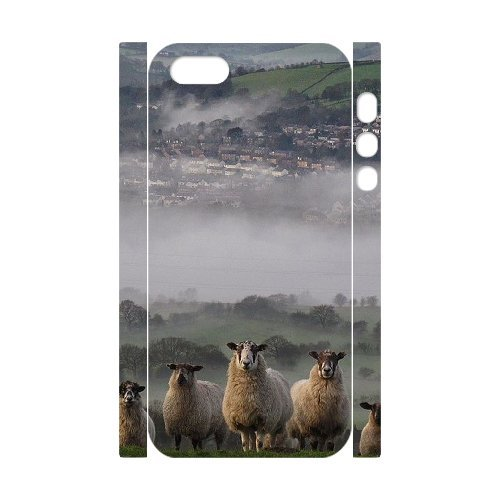 LP-LG Phone Case Of Sheep For iPhone 5,5S [Pattern-6] Pattern-2