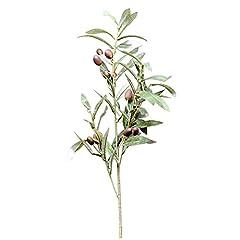 Idea Regalo - SODIAL Foglia verde oliva artificiale Piante verdi Frutti rami Foglie finte decorazioni per la casa
