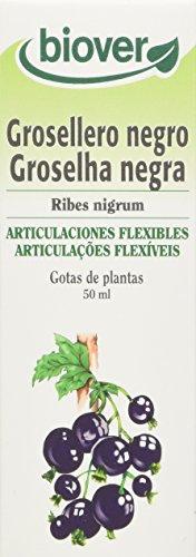 Biover Ribes Nigrum Cassis bio