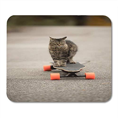Luancrop Mauspads Waschbär-graue dumme Katze auf elektrischem Skateboard-Brett Maine-Mausunterlage für Notizbücher, Tischrechnermatten Bürozubehöre