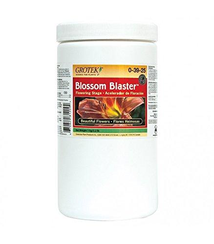 Engrais / Stimulateur de Floraison Grotek Blossom Blaster (1Kg)