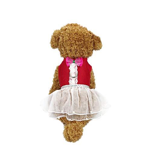 eidung Reflektierendes atmungsaktives Kleid Dog Traction Brustgurt einstellbar ()