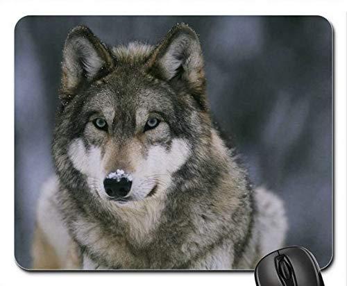 Schnee-Wolf-Mausunterlage, Mousepad MP7159 -