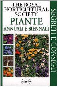 piante-annuali-e-biennali
