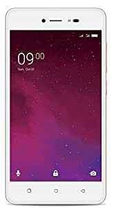 Lava Z60 (Gold) with Offers