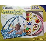 Butterfly Play Gym with Net