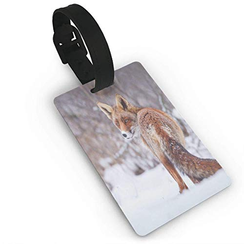 äckanhänger mit Namensausweis Personalausweis Luggage Tags Flexible Travel ID Identification LabelsCountryside Snow Landscape Furry Wild Animal Hunting Vulpine Cold Winter PrintTravel Accessory (Große Furry Animal)