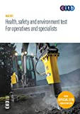 Health, safety and environment test for operatives and specialists 2019 : GT100/19