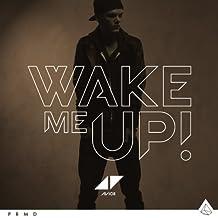 AVICII - WAKE ME UP -2TR-