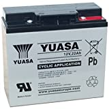 Yuasa Golf Trolley Battery 22AH REC22-12 (Replaces YPC22-12)