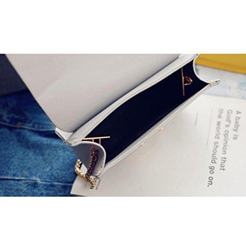 BZLine® Frauen Messenger Small Clutch Kette Crossbody Taschen Tote Grau