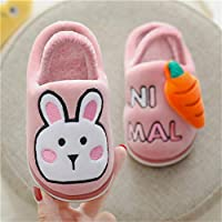 XXZZ Slippers for Women Kids Winter Comfort Memory Foam Rabbit Frog Cartoon Slippers Indoor Boy Cotton Flip Flop for Boys And Girls