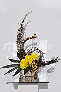Moderno Vaso Di Abbassamento giallo di rose Orchidea fogli di schermo e Mimosa