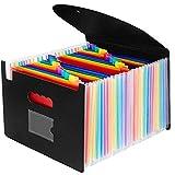 AnkamalElec Trieur Document Porte Document Extensible A4 Self Debout Accordéon Briefcase Business Boite de Classement avec un Couvercleet Porte-cartes de Visite (24 Compartiments)