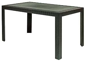 Areta AR014 Urano Décor Rattan Table Plastique 140 x 80 x 72 cm