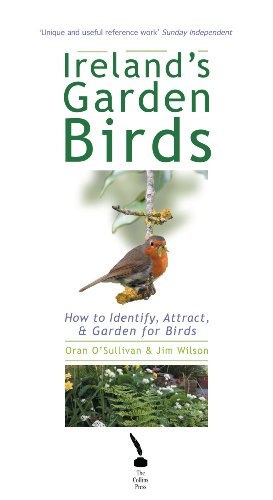 Long Blue Willow (Ireland's Garden Birds – How to Attract, Identify and Garden for Birds: How to Attract, Identify and Care for Garden Birds)