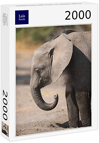 Lais Puzzle Elefante Joven en el Parque Nacional de Serengeti 2000 Piezas