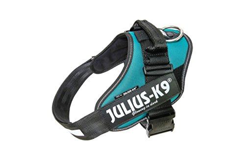 Julius-K9, 16IDC-PG-1, IDC-Powergeschirr, Hundegeschirr, Größe: 1, Petrol-Grün