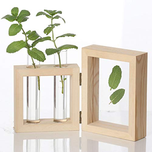 xue binghualoll Hauptdekoration,Kreative Hydroponische Pflanze Transparente Vase Holzrahmen Coffee Shop Room Decor -