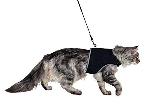 Katzengeschirr mit Leine, weich, groß, Schwarz