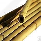 5 Stück Bambusstangen 300 cm x 12/14 cm