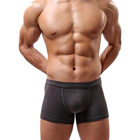 Calzoncillos para hombre, Amlaiworld Pantalones cortos del bombeo bolsa escritos del boxeador suave (Gris, L)