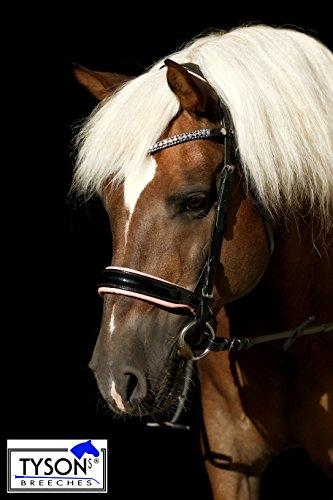 Trense ROSI Reitzaum Sperriemen zum ändern ! Lack Leder Rosa Super Glitzer Strass Pony VB WB XF Kaltblut Tysons Leder Butterweich Schwarz Rosa (Pony) -