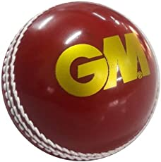 GM Skill Poly Tennis Cricket Ball Soft (Red)