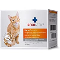 RECOACTIV® Nieren Tonicum für Katzen - Kurpackung 3 x 90 ml