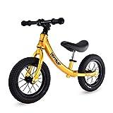 Bicicleta sin pedales Bici Balance Bike for Boy - Bicicleta Liviana sin Pedales con neumáticos, 2/3/4/5/6 años (Color : Orange)