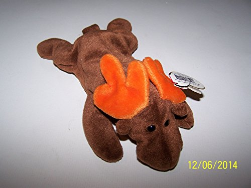 chocolate-the-moose-ty-beanie-baby