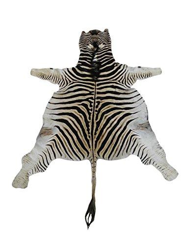 Zerimar Alfombra piel de cebra africana de la raza burchell, procedente de sudafrica Medidas: 280x210 cms 100% Natural Un detalle exotico y distinguido en su hogar