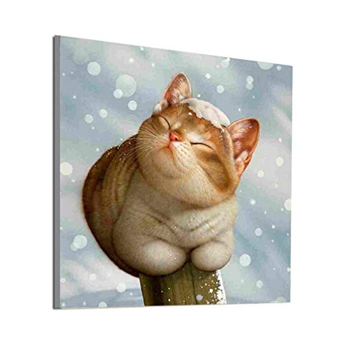 iamant Gemälde malen nach Zahlen Kit,5d malerei Diamant Kinder Diamant Painting Tier Kristall Strass Stickerei Kreuzstich Kunst Handwerk Leinwand für Wanddekoration 30 x 30 cm ()