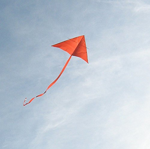 The Kite (Sunstart): The Kite Bk.3 (Learn to Read Other)