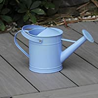 MIA&prit 1.6 Letre Metal Watering Bucket,Beautiful Blue Kids Children Garden Watering Can with Anti-rust Powder Coating Watering Can with Movable Carry Handle Colourful