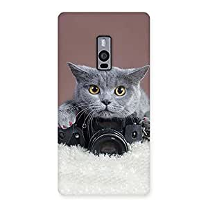 Gorgeous Kitty Photographer Multicolor Back Case Cover for OnePlus Two