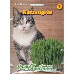 Katzengras Saatmischung von Chrestensen - Du und dein Garten
