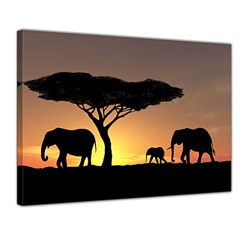 Bilderdepot24 Cuadros en Lienzo Familia Elefantes - 40 x 30 cm -...