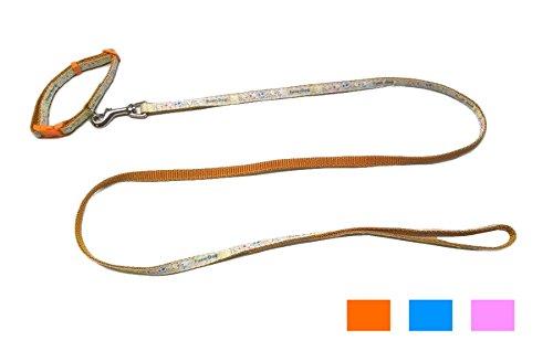Fuss Dog Parure collare + guinzaglio - Kit in nylon per cuccioli, cani di piccola taglia o gatti (Arancione)