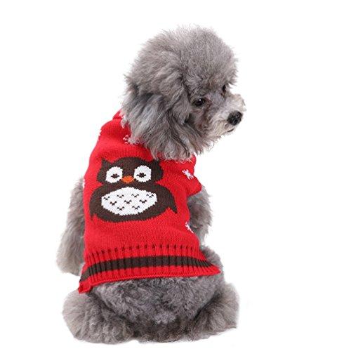 n Kleidung Haustier Karikatur Eule Gestrickte Pullover Rot S (Bilder Von Haustiere In Kostüme)