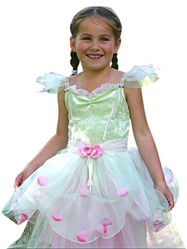 Fancy Ole - Mädchen Girl Karneval Kostüm Kleid Apple Blossom, Mehrfarbig, Größe 116-128, 6-8 (Dress Apple Kostüm Fancy)
