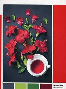 Clementoni- Puzzle 1000 pzas Pantone Berry, Multicolor (39494)