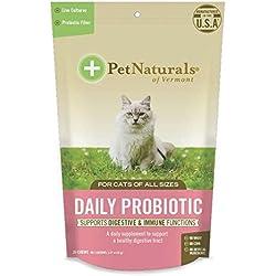 Pet natürlichen 's of Vermont Täglicher Probiotic für Katzen, Verdauungs Nahrungsergänzungsmittel, 30Bite Soft Chews Spielzeug